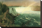 Niagara Stretched Canvas Print by Albert Bierstadt