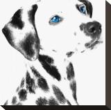 Dalmatian Date V Impressão em tela esticada