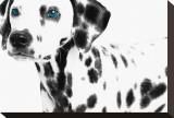 Dalmatian Date II Impressão em tela esticada