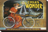 Cycles Wonder Stretched Canvas Print by Francisco Tamagno