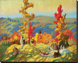 Autumn in the Northland Stretched Canvas Print by Franklin Carmichael