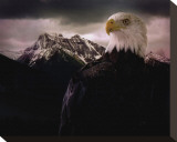 Eagle Mountain Stretched Canvas Print by Steve Hunziker