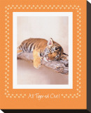 All Tiger-Ed Out Stretched Canvas Print by Rachael Hale