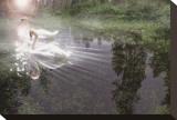Magic Swan Impressão em tela esticada por Steve Hunziker