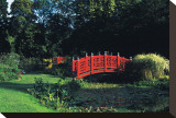 Japanese Bridge over Waterlilies Pond Stretched Canvas Print