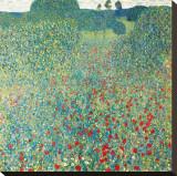 Poppy Meadow, c.1907 Stretched Canvas Print by Gustav Klimt
