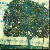 Apple Tree II, c.1916 Stretched Canvas Print by Gustav Klimt