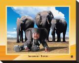 Elefante de safari imaginario Reproducción en lienzo de la lámina por Tom Arma