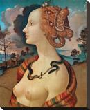 Rittrato di Simonetta Vespucci Stretched Canvas Print by  Piero di Cosimo