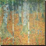 Birch Forest, c.1903 Stretched Canvas Print by Gustav Klimt
