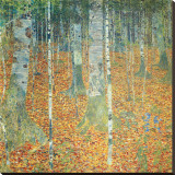 Birkenwald, ca.1903 Leinwand von Gustav Klimt