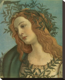 Minerva (detail) Stretched Canvas Print by Sandro Botticelli