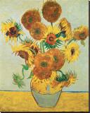 Girasoles, 1888 Reproducción de lámina sobre lienzo por Vincent van Gogh