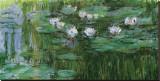 Ninfeas Reproducción en lienzo de la lámina por Claude Monet