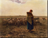 La Bergere, c.1814-1875 Stretched Canvas Print by Jean-François Millet