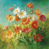 Painted Daisies Prints by Danhui Nai
