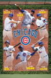 Cubs Collage Poster