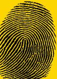 Fingerprints Prints