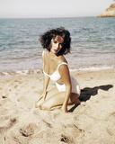 Suddenly, Last Summer, Elizabeth Taylor Photo