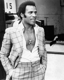 Fred Williamson Photo