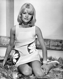 Judy Geeson - Hammerhead Photo