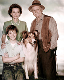 Jon Provost - Lassie Photo
