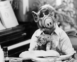 ALF Photo