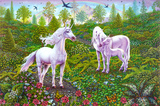 Unicorn Gardens Affiches