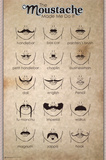 The Moustache Print