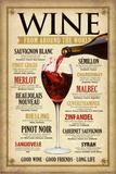 Vína ve světě Plakát
