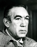 Anthony Quinn - Across 110th Street Photo
