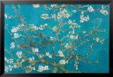 Almond Blossom San Ramy, 1890 Psters