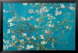 Almond Blossom San Ramy, 1890 Julisteet