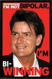 Charlie Sheen - Bi-Winning Posters