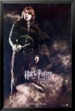 Harry Potter og flammernes pokal Posters