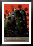 Hundert Jahre Einsamkeit von Gabriel Garcia Marquez Kunstdrucke von Tamas Galambos