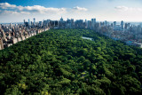Central Park New York Print