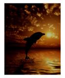 La llamada del mar Lámina giclée por Julie Fain