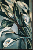 Arums II Stretched Canvas Print by Tamara De Lempicka