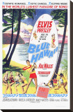 Blue Hawaii Stretched Canvas Print