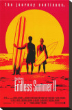Endless Summer 2 Stretched Canvas Print