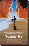The Karate Kid Stretched Canvas Print