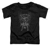Toddler: Superman - Steel T-shirts
