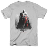 Batman Arkham City - Harley and Bats Shirts