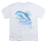 Youth: Dolphin Tale - Winter Water Color T-shirts