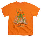 Youth: Aquaman - Aquaman Distressed T-shirts