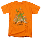 Aquaman - Aquaman Distressed Camisetas