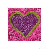 Madalenes Hearts Pink Posters
