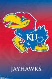 Kansas University 2011 Plakater