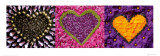 Madalenes Hearts Purple Posters